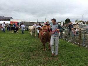 rosshow2014b